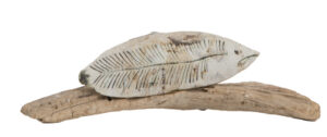 Camouflage (on Driftwood)..Finlay Claire..€190