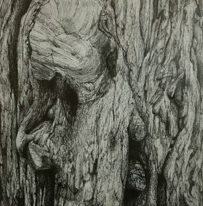 joanneMcAndrew....Contemplation...Pen Drawing on Wood...€350