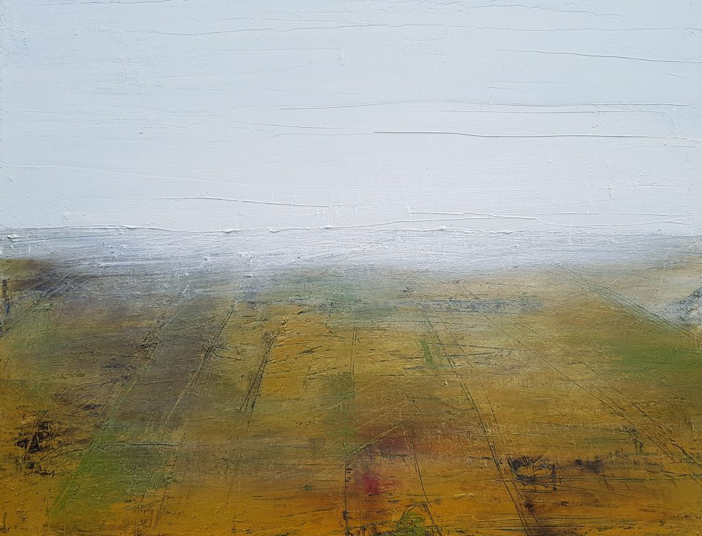 Resting Bog VI By Paul Colreavy