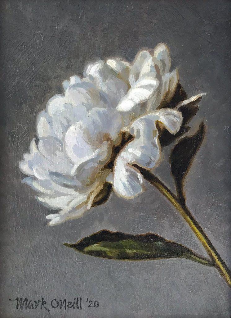 Little Magnolia…Oil on Board  by Mark O'Neill